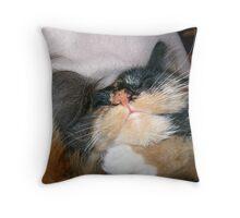 Slumber Throw Pillow