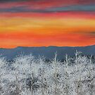 Frosty Sunset by Maria Hathaway Spencer
