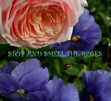 STOP AND SMELL THE ROSES by artist4peace