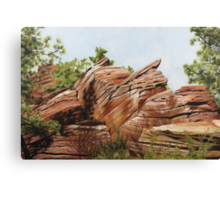 Zions Canyon #2 Canvas Print