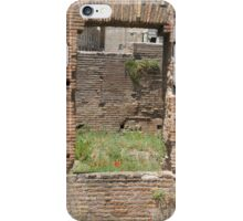 HOLE IN THE WALL iPhone Case/Skin