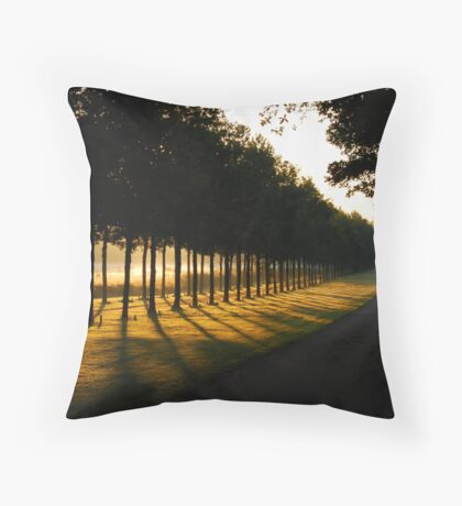 A summer-morning dream Throw Pillow