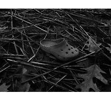 The Croc Photographic Print