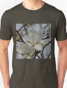 White Magnolia Blooming in The Spring T-Shirt