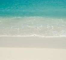 Coconut on the beach by Debora Horwitz
