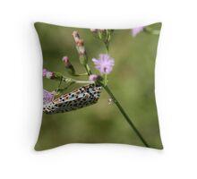 Salt and pepper moth Throw Pillow