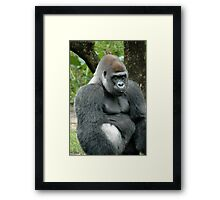 Take the picture already!! Framed Print