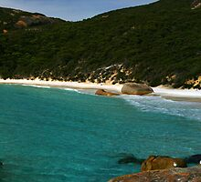 Little Beach, Albany W.A. Panoramic by Sandra Chung