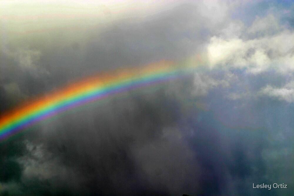 Rainbow In Rainy Sky By Lesley Ortiz Redbubble