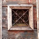 Rustic Italian Window by waddleudo
