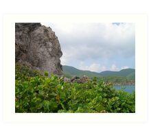Cobbler's Rock (Sea Grapes) Art Print