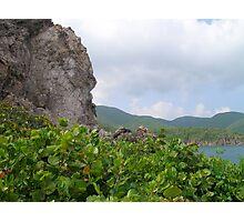 Cobbler's Rock (Sea Grapes) Photographic Print