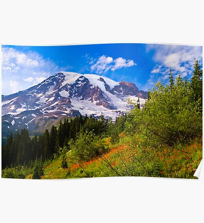 Mount Rainier and wildflower meadow Poster
