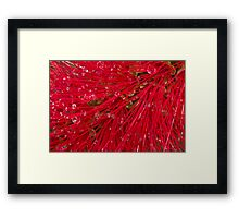Red brush Framed Print