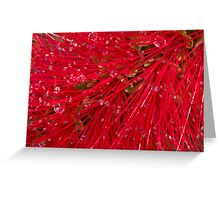 Red brush Greeting Card