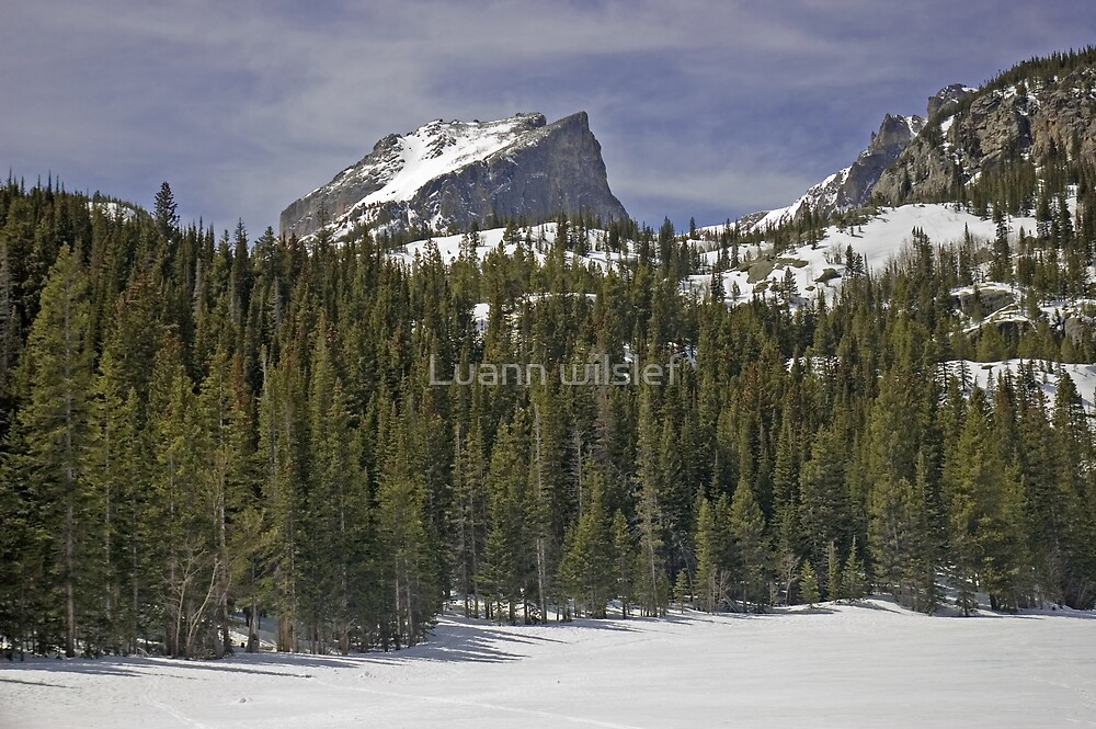 Last Snow at Bear Lake by Luann wilslef
