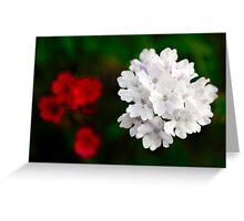 Flower image Greeting Card