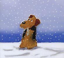 Lakeland Terrier Dog by archyscottie