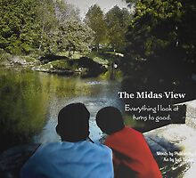 The Midas View by Judi Taylor