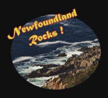 Newfoundland Rocks by Stan Wojtaszek