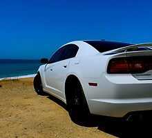 White Knight of the PCH by PatrickO