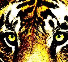 Tiger, Tiger by munggo2