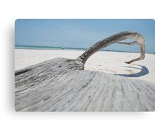 Fallen Log, Kenya Canvas Print