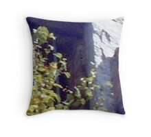 Ghostly Apparition Looking Out of the Garrett Mountain Lookout Tower Throw Pillow