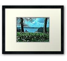""""""" Tresilick Garden Framed Print"""