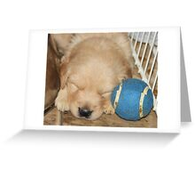 Max fetching dreams '09 Greeting Card