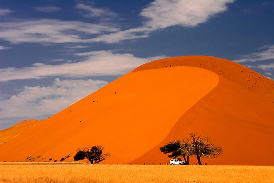 Dune 45 Sossusvlei, Namib Naukluft Park, Namibia. Africa. by photosecosse /barbara jones