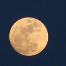 Moon Day Before Passover by Linda Miller Gesualdo