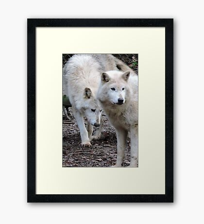 Devoted Guardians Framed Print