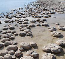 Living Rocks by Chris Pritchard