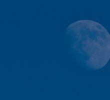 Winter moon by oddity