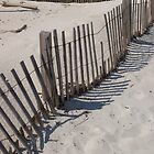 Can't fence me in at the beach by greenjewels77