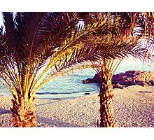 paradise life Photographic Print