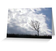 Tree, In Line With Moving White Cloud Greeting Card