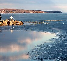 Melting Ice on the Lake, Barrie, Ontario by Helena Haidner