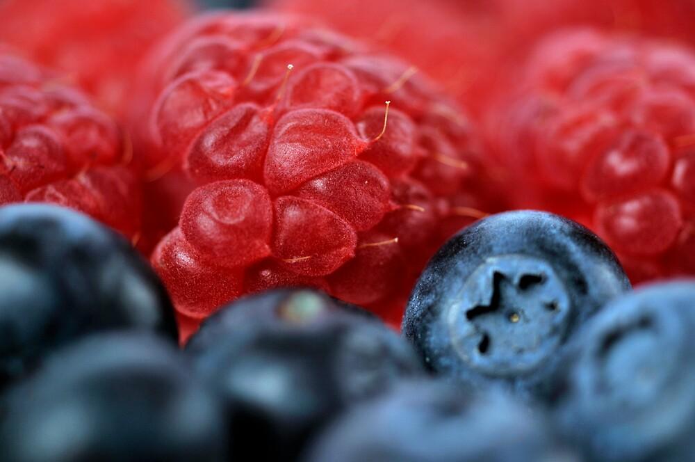 Berries by Debora Horwitz