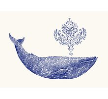 Damask Whale  Photographic Print