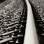 The Rails by stevanovicigor