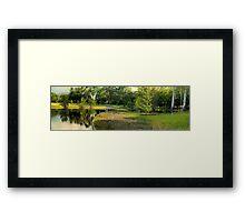 Anderson Park flooded-HDR Framed Print