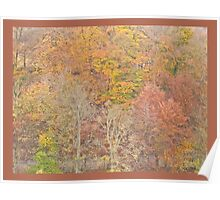Autumnal Trees Poster