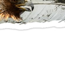 Eagle Spirit Sticker