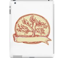 Olive Tree Ribbon Oval Etching iPad Case/Skin