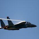 Air Force F-15E Strike Eagle by Jonicool