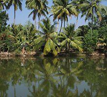Kerala Life by ardwork