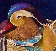 Mandarin duck by conniecrayon