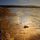A WALK ON THE BEACH by leonie7